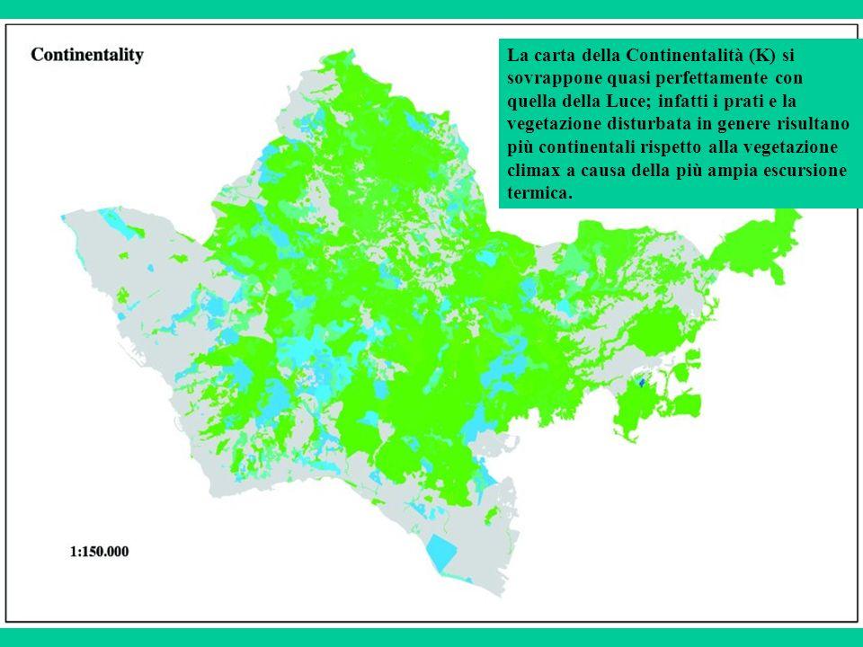 La carta della Continentalità (K) si sovrappone quasi perfettamente con quella della Luce; infatti i prati e la vegetazione disturbata in genere risultano più continentali rispetto alla vegetazione climax a causa della più ampia escursione termica.