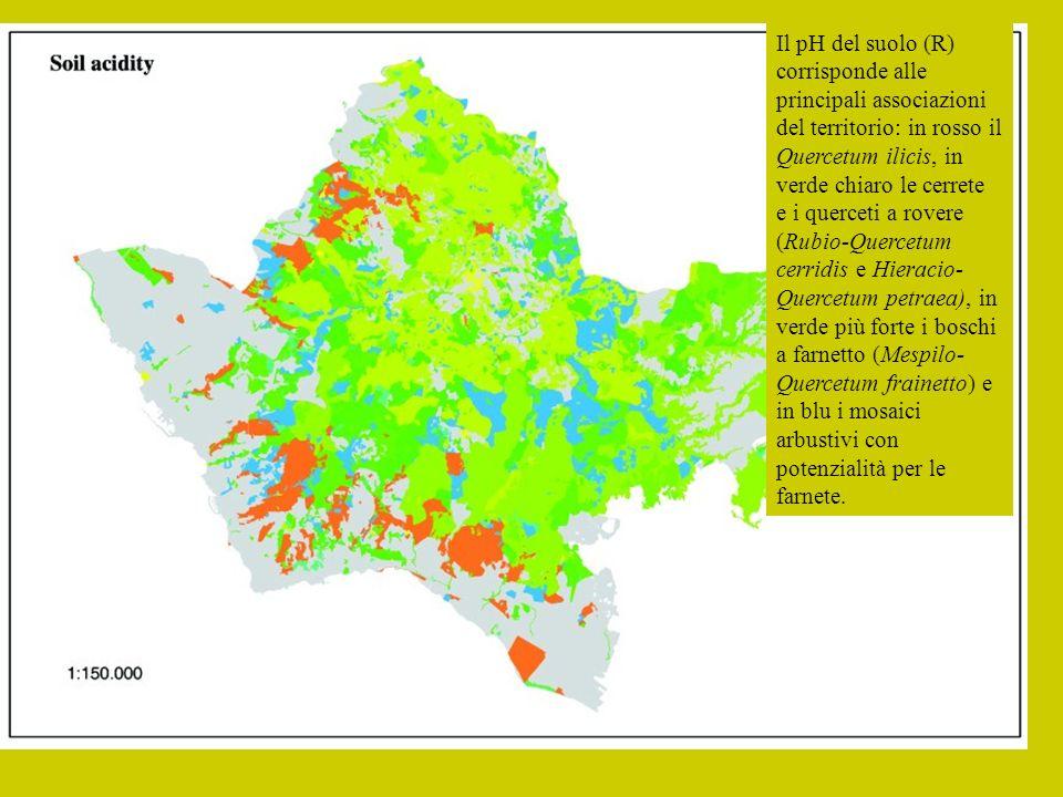 Il pH del suolo (R) corrisponde alle principali associazioni del territorio: in rosso il Quercetum ilicis, in verde chiaro le cerrete e i querceti a rovere (Rubio-Quercetum cerridis e Hieracio-Quercetum petraea), in verde più forte i boschi a farnetto (Mespilo-Quercetum frainetto) e in blu i mosaici arbustivi con potenzialità per le farnete.
