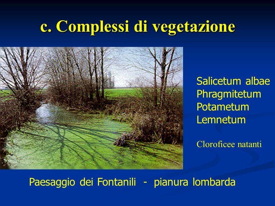 c. Complessi di vegetazione