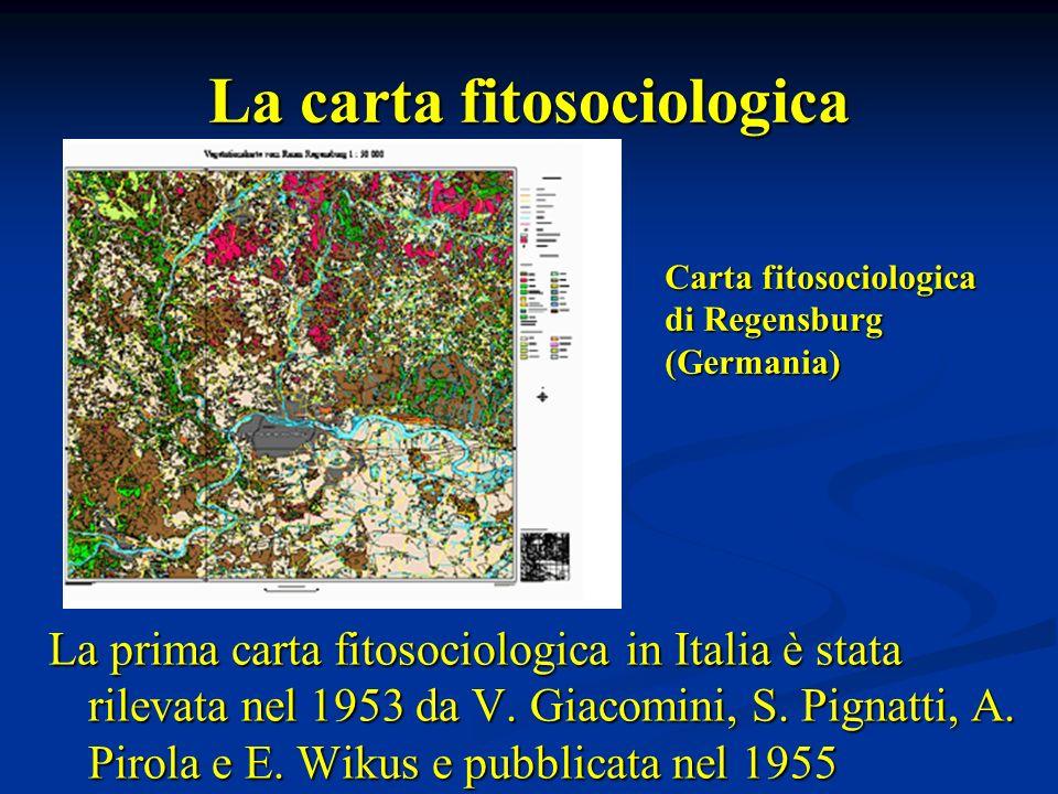 La carta fitosociologica