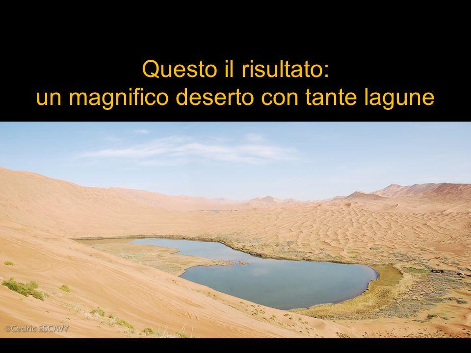 un magnifico deserto con tante lagune