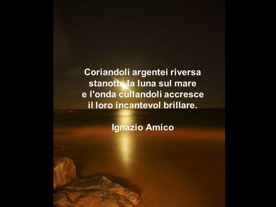 Coriandoli argentei riversa stanotte la luna sul mare e l onda cullandoli accresce il loro incantevol brillare.