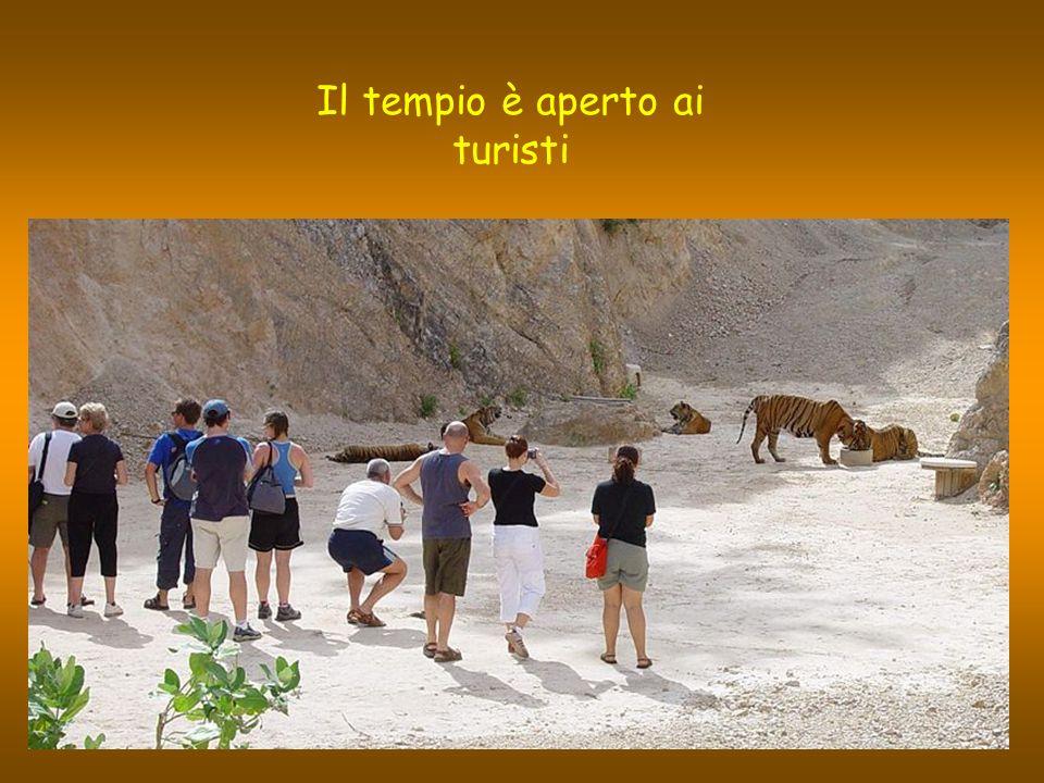Il tempio è aperto ai turisti