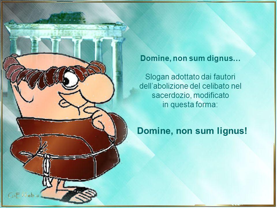 Domine, non sum lignus! Domine, non sum dignus…