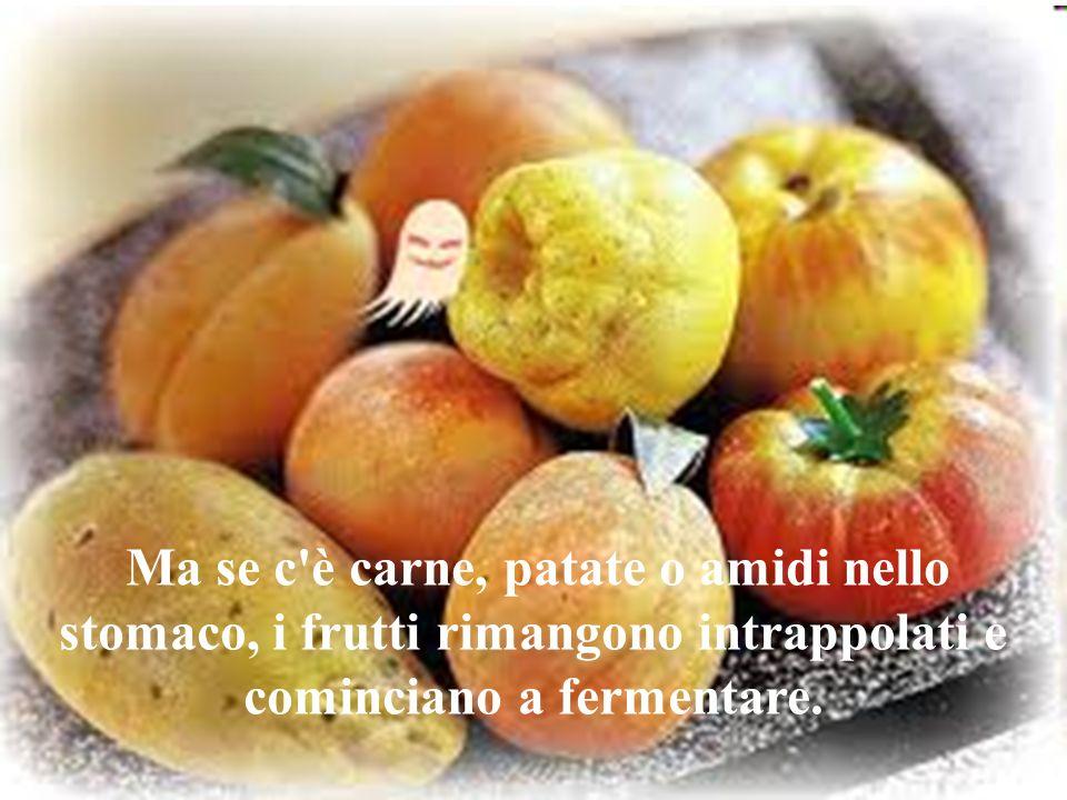 Ma se c è carne, patate o amidi nello stomaco, i frutti rimangono intrappolati e cominciano a fermentare.
