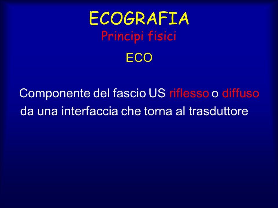 ECOGRAFIA Principi fisici