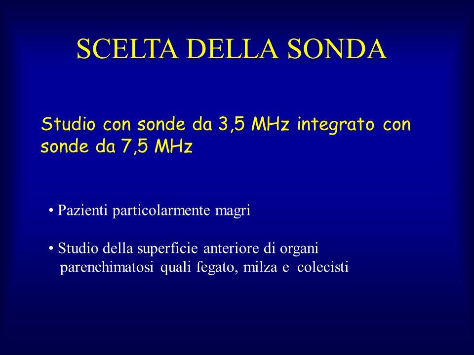Studio con sonde da 3,5 MHz integrato con sonde da 7,5 MHz