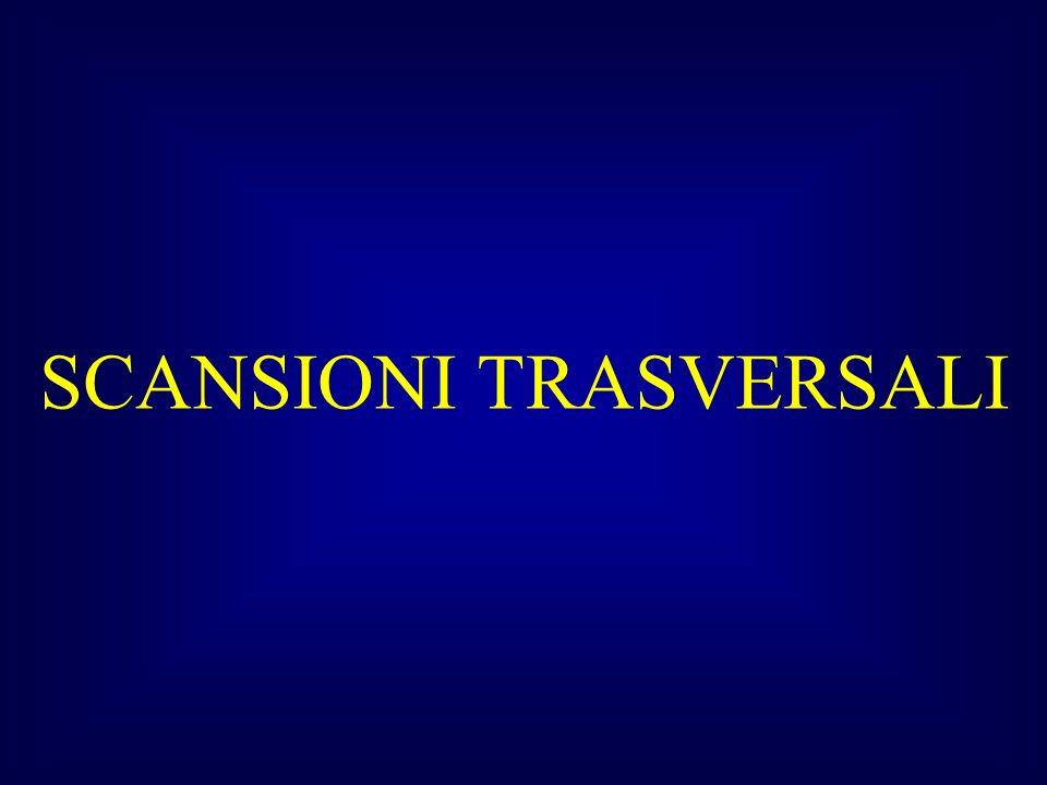 SCANSIONI TRASVERSALI