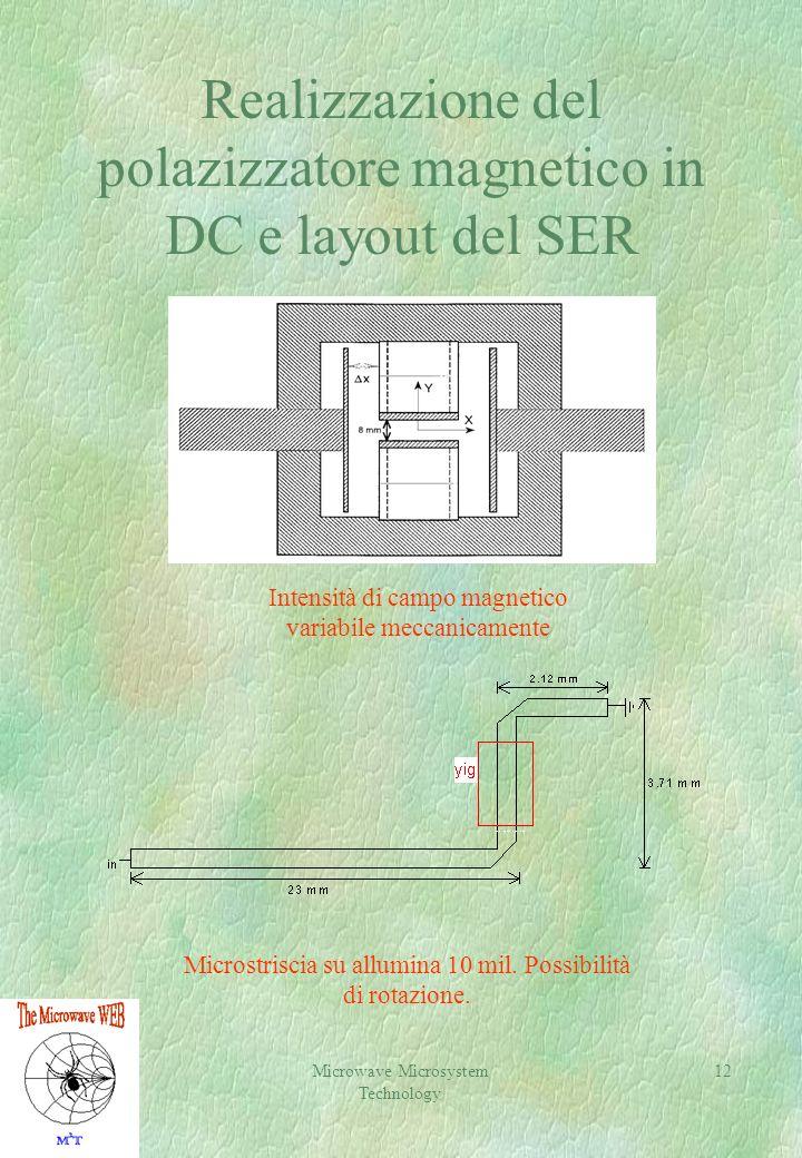 Realizzazione del polazizzatore magnetico in DC e layout del SER