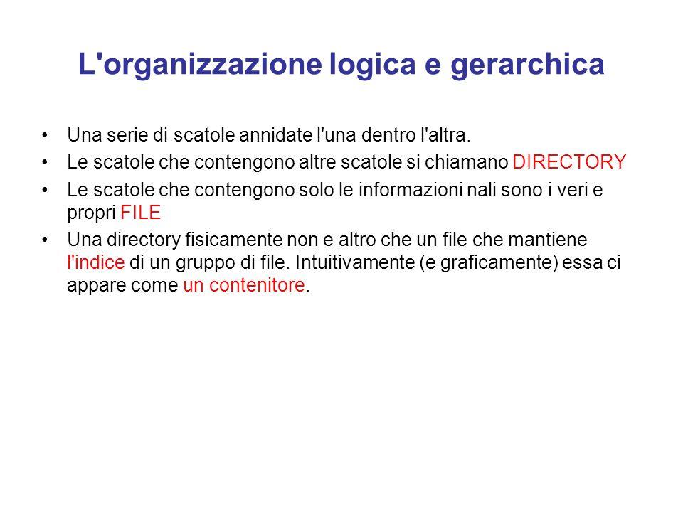L organizzazione logica e gerarchica