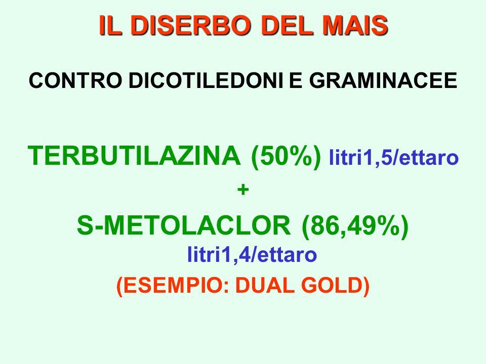 TERBUTILAZINA (50%) litri1,5/ettaro