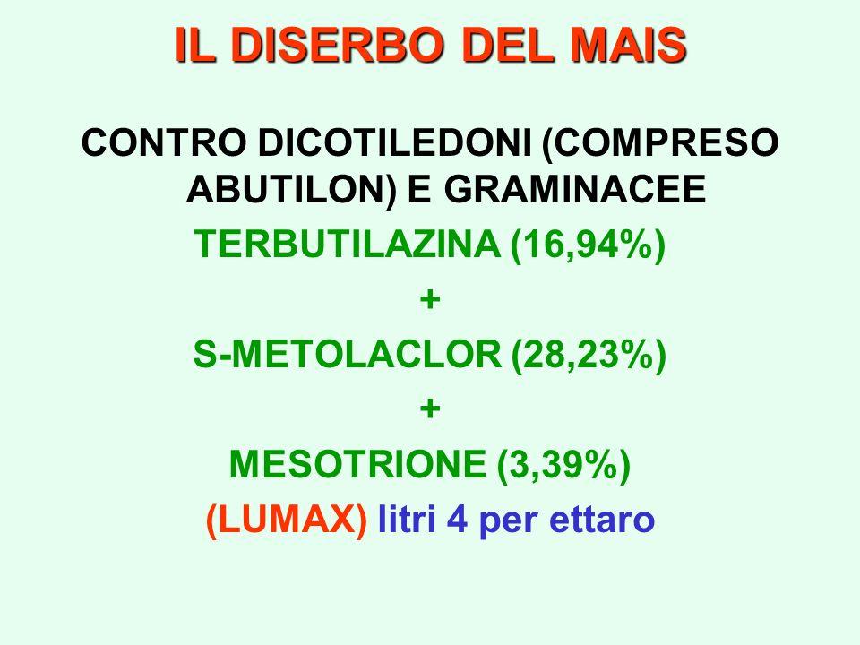 IL DISERBO DEL MAIS CONTRO DICOTILEDONI (COMPRESO ABUTILON) E GRAMINACEE. TERBUTILAZINA (16,94%) +