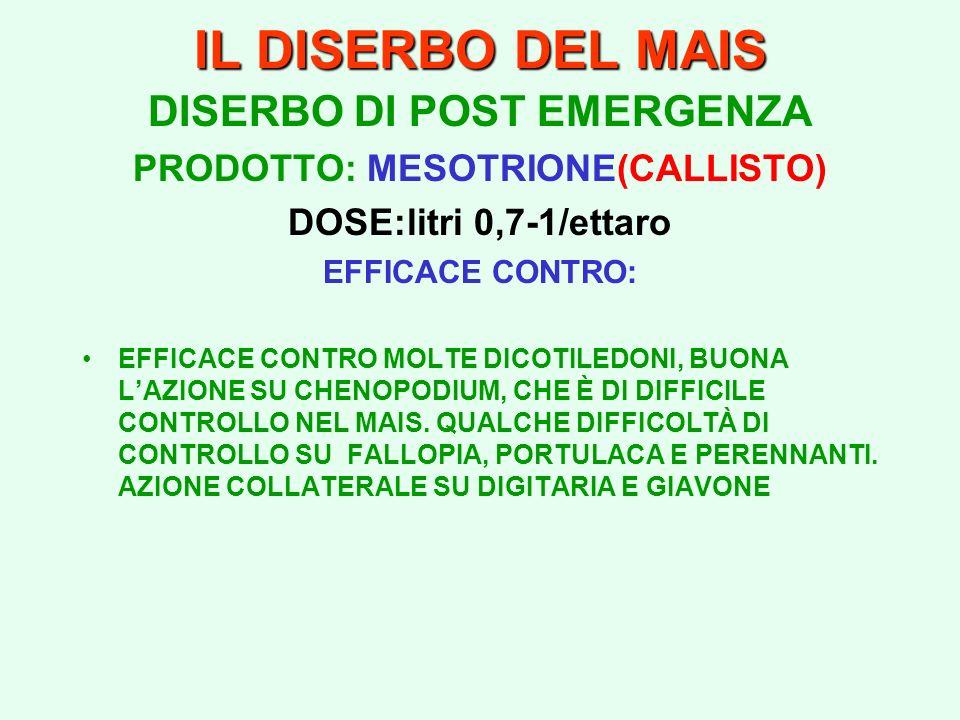 DISERBO DI POST EMERGENZA PRODOTTO: MESOTRIONE(CALLISTO)