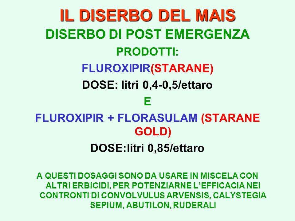 DISERBO DI POST EMERGENZA FLUROXIPIR + FLORASULAM (STARANE GOLD)