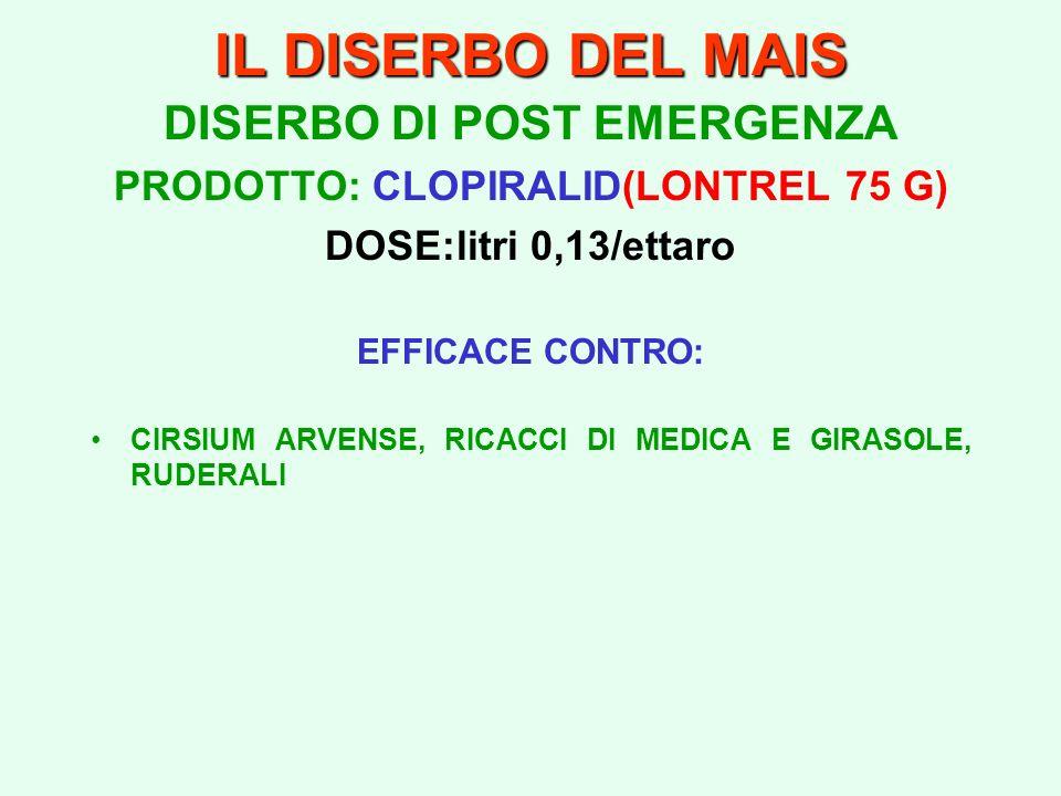 DISERBO DI POST EMERGENZA PRODOTTO: CLOPIRALID(LONTREL 75 G)