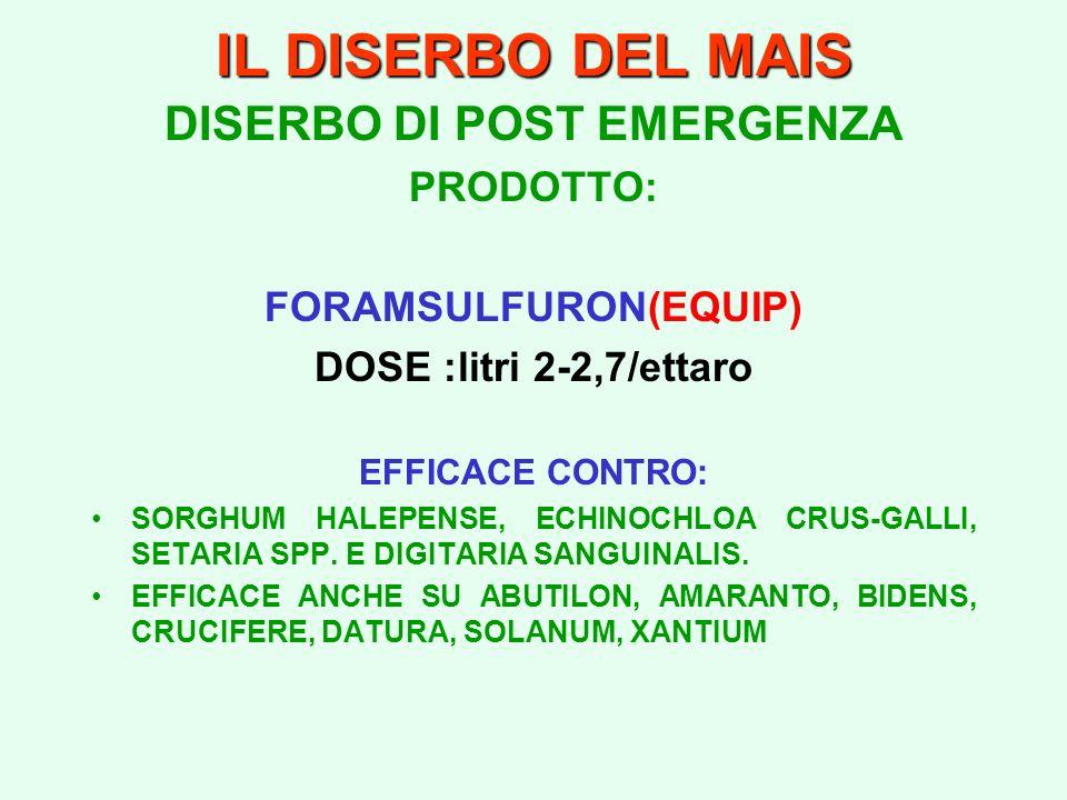 DISERBO DI POST EMERGENZA FORAMSULFURON(EQUIP)