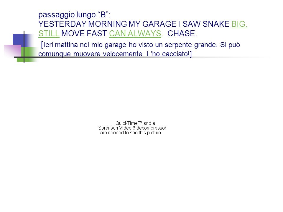 passaggio lungo B : YESTERDAY MORNING MY GARAGE I SAW SNAKE BIG