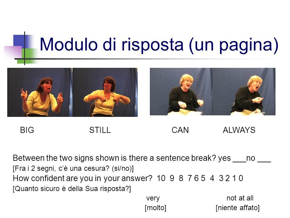 Modulo di risposta (un pagina)