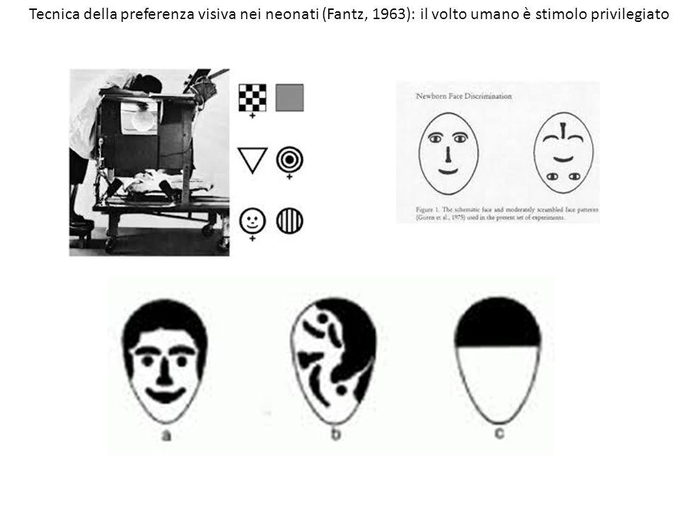 Tecnica della preferenza visiva nei neonati (Fantz, 1963): il volto umano è stimolo privilegiato
