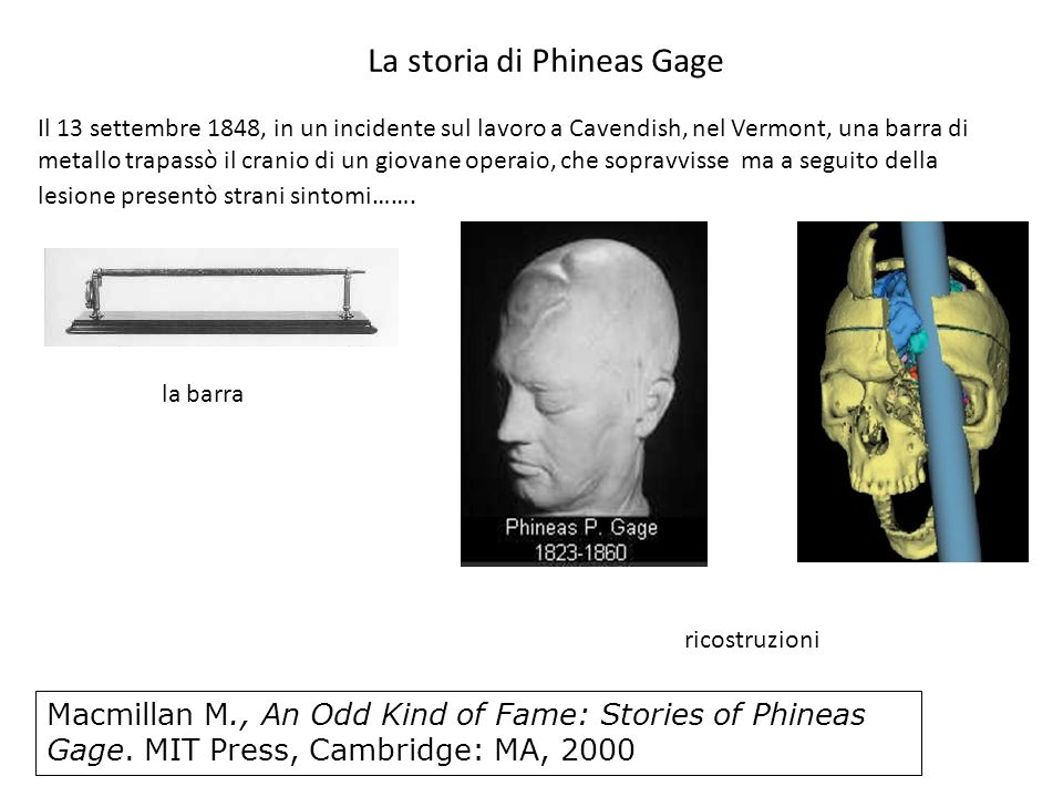 La storia di Phineas Gage
