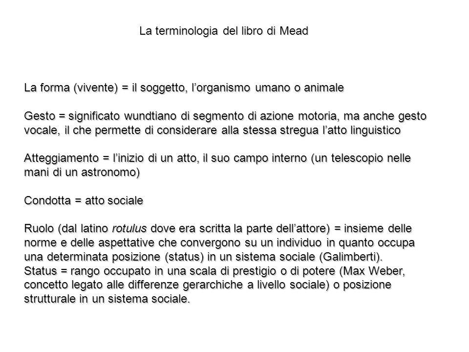 La terminologia del libro di Mead