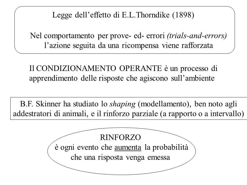 Legge dell'effetto di E.L.Thorndike (1898)