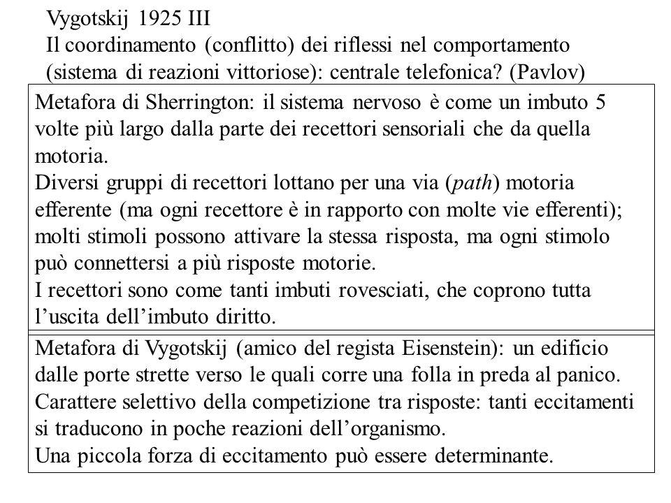 Vygotskij 1925 III Il coordinamento (conflitto) dei riflessi nel comportamento. (sistema di reazioni vittoriose): centrale telefonica (Pavlov)