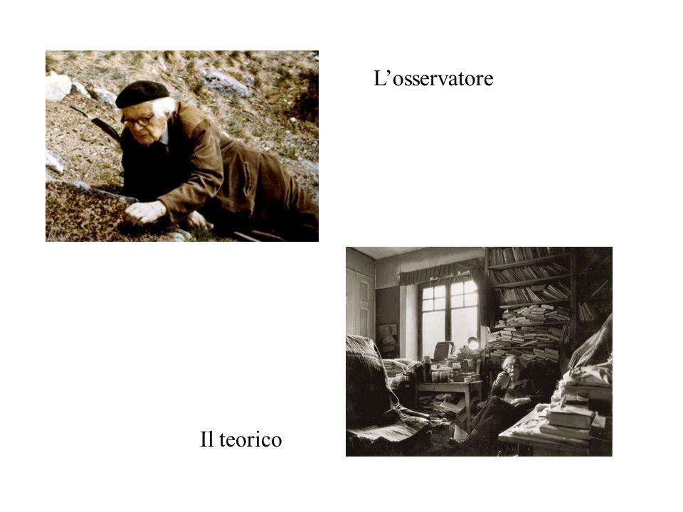 L'osservatore Il teorico