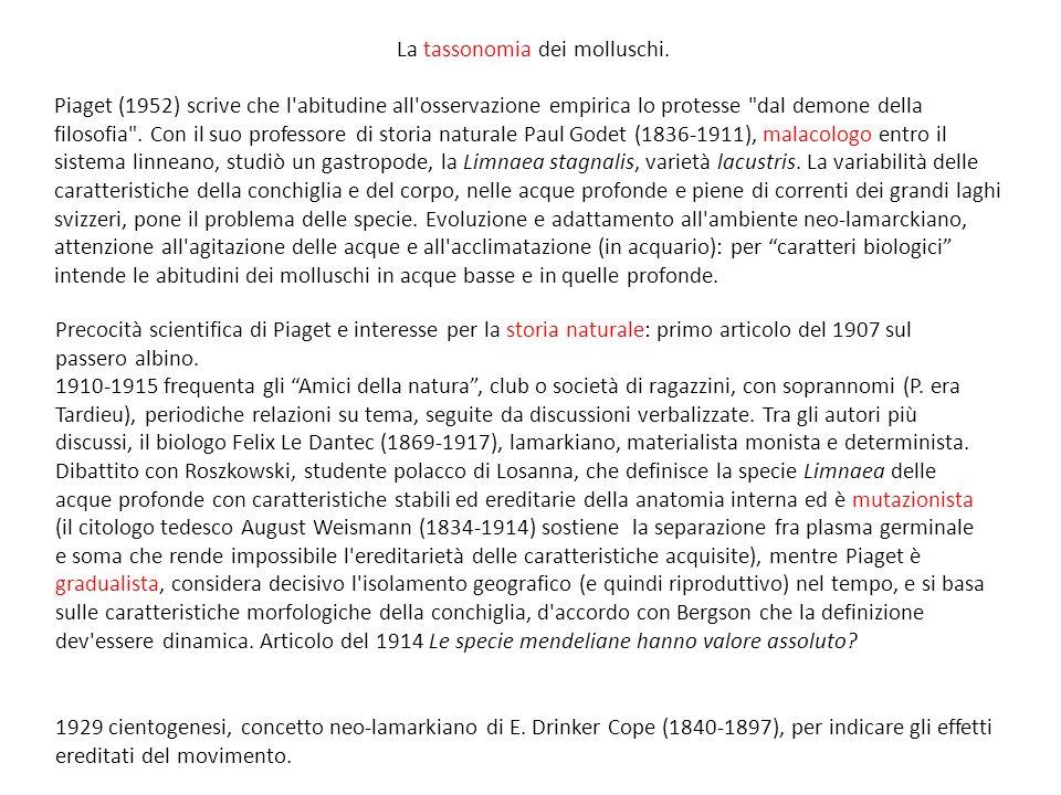 La tassonomia dei molluschi.
