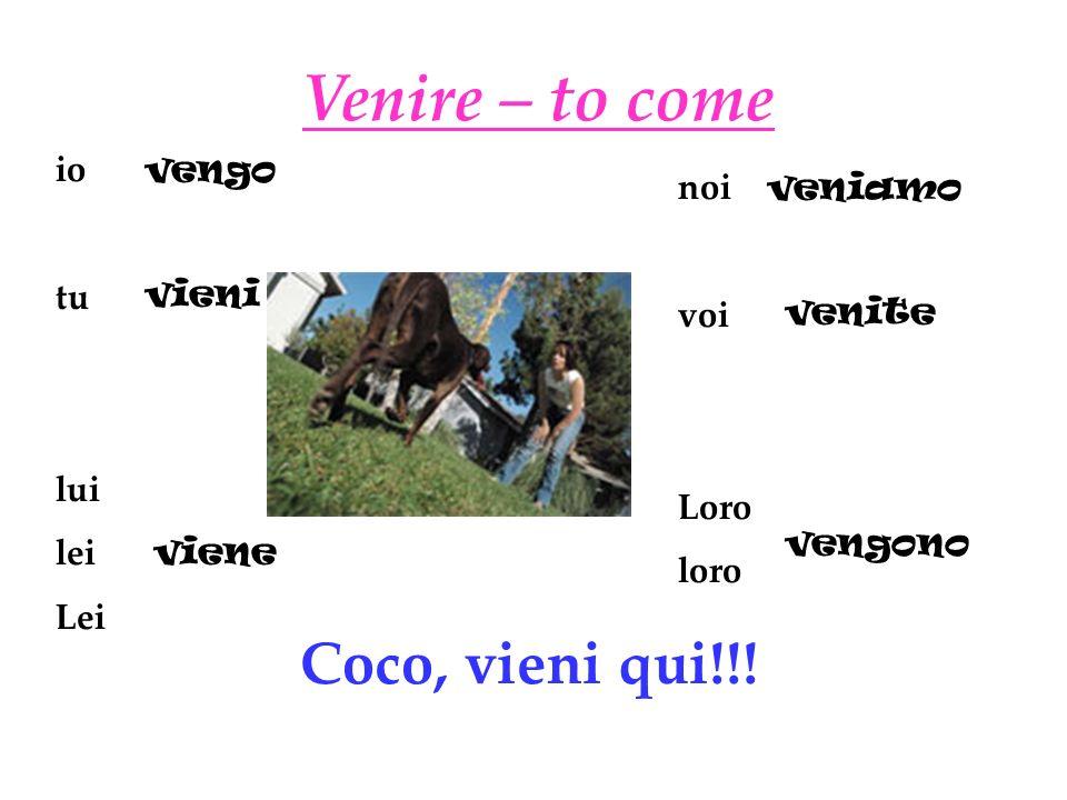Venire – to come Coco, vieni qui!!! io tu lui lei Lei vengo noi voi