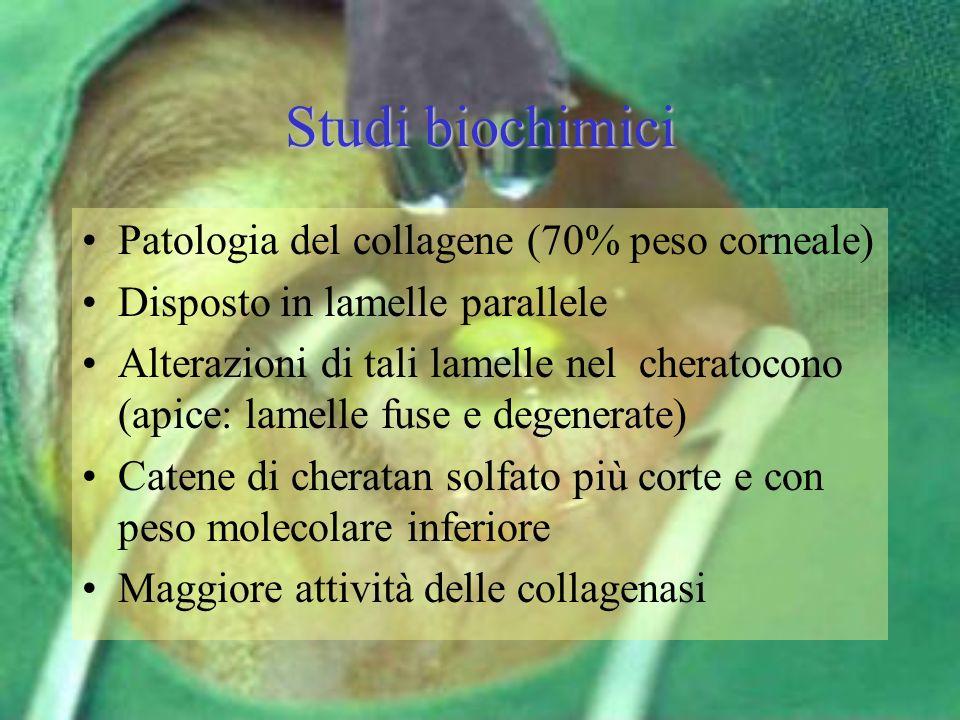 Studi biochimici Patologia del collagene (70% peso corneale)