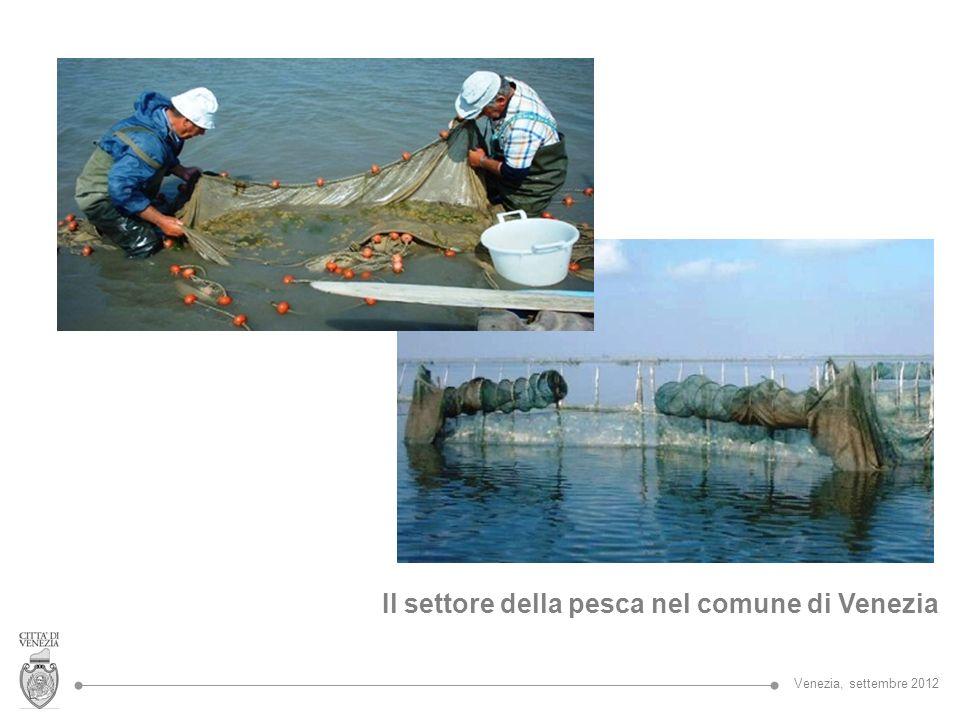 Il settore della pesca nel comune di Venezia