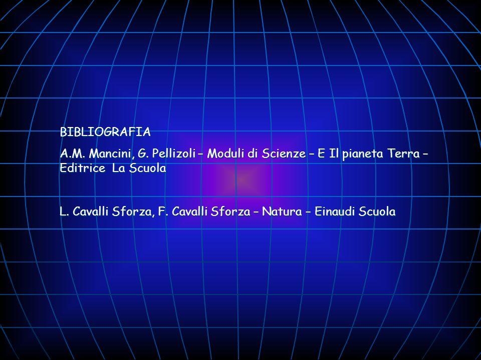 BIBLIOGRAFIA A.M. Mancini, G. Pellizoli – Moduli di Scienze – E Il pianeta Terra – Editrice La Scuola.