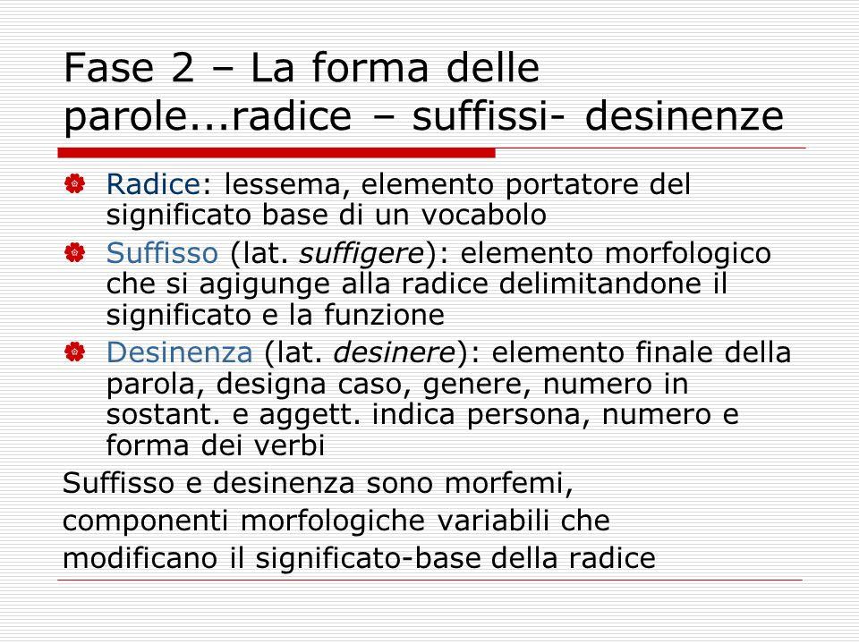 Fase 2 – La forma delle parole...radice – suffissi- desinenze