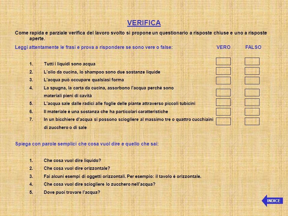 VERIFICA Come rapida e parziale verifica del lavoro svolto si propone un questionario a risposte chiuse e uno a risposte aperte.