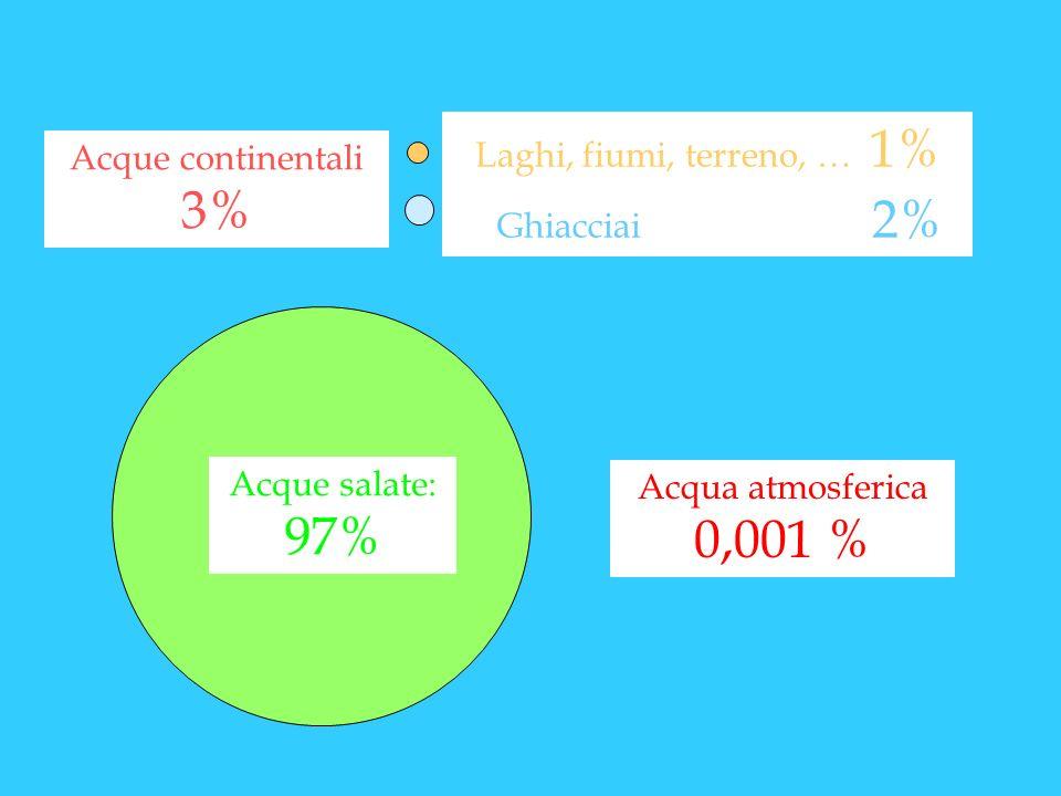 Laghi, fiumi, terreno, … 1% Ghiacciai 2% Acque continentali 3% Acque salate: 97%