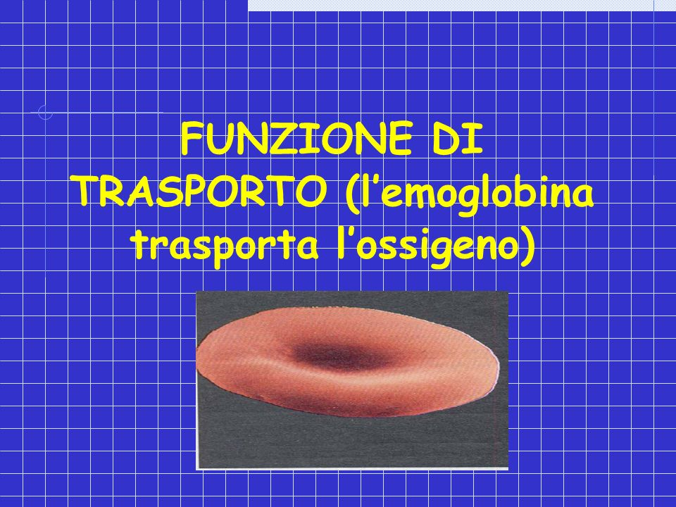 FUNZIONE DI TRASPORTO (l'emoglobina trasporta l'ossigeno)