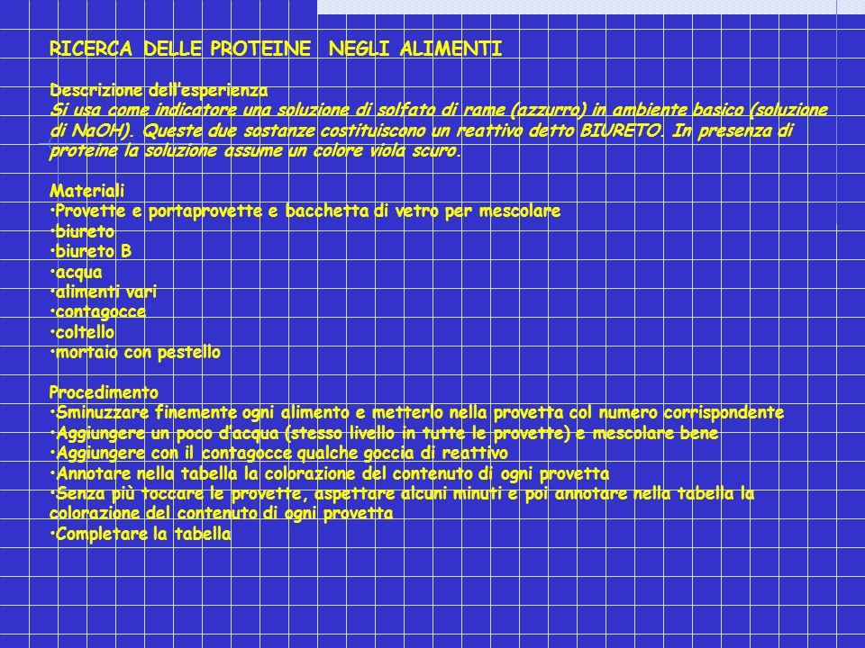Le proteine ppt video online scaricare for Provette e portaprovette