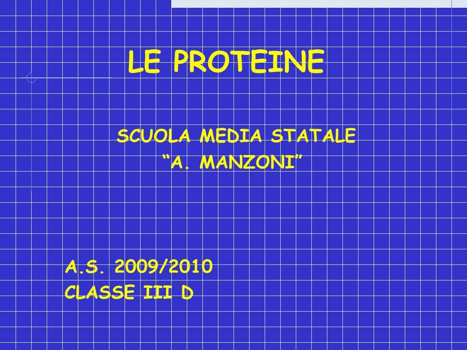 LE PROTEINE SCUOLA MEDIA STATALE A. MANZONI A.S. 2009/2010