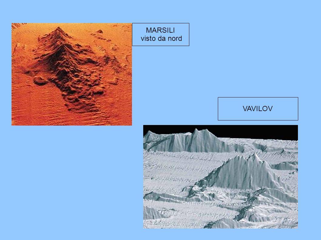 MARSILI visto da nord VAVILOV