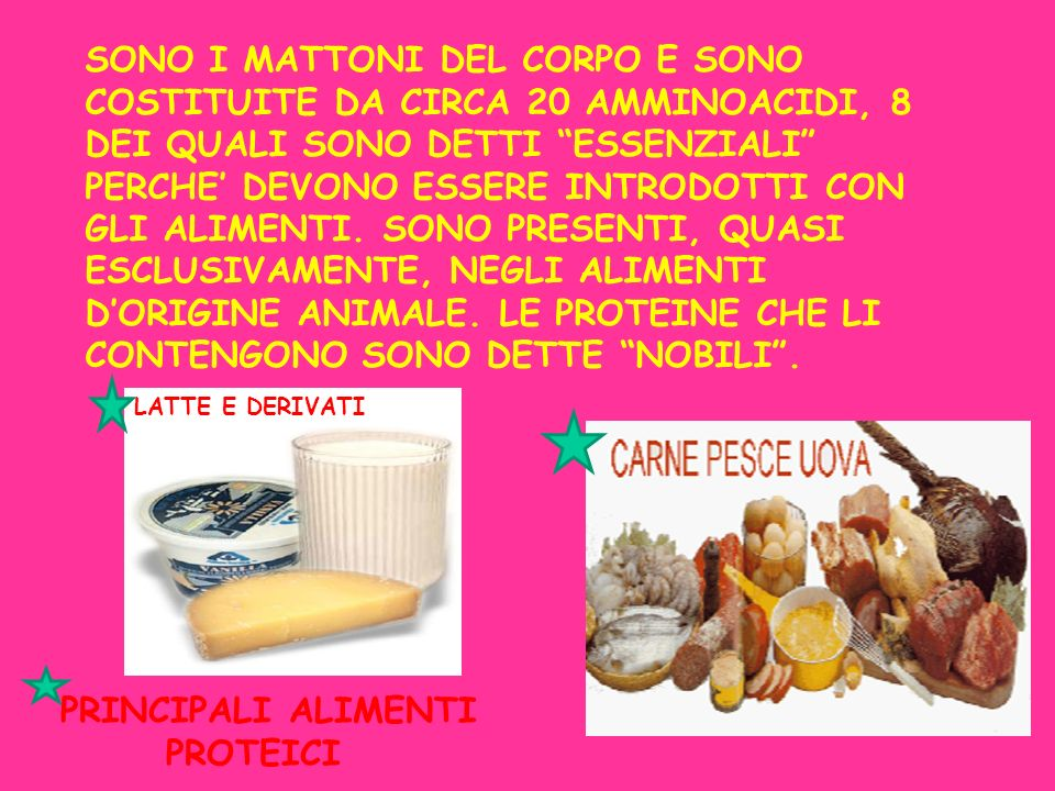 SONO I MATTONI DEL CORPO E SONO COSTITUITE DA CIRCA 20 AMMINOACIDI, 8