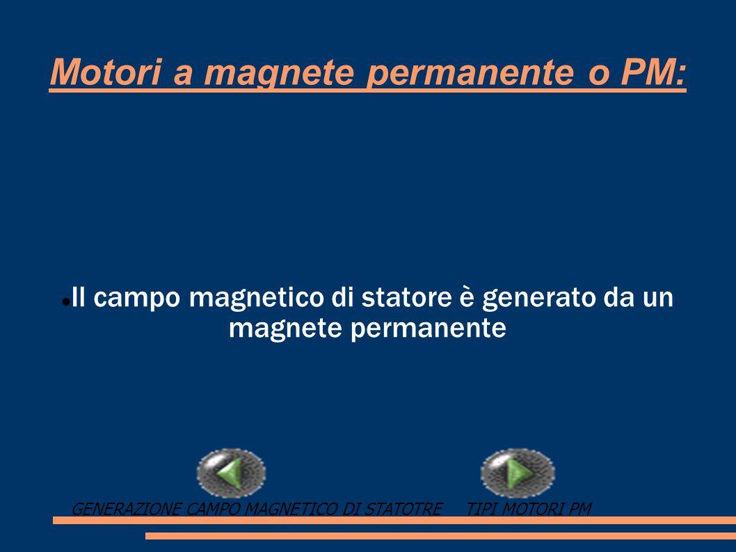 Motori a magnete permanente o PM: