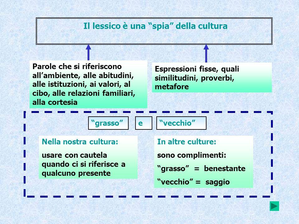 Il lessico è una spia della cultura