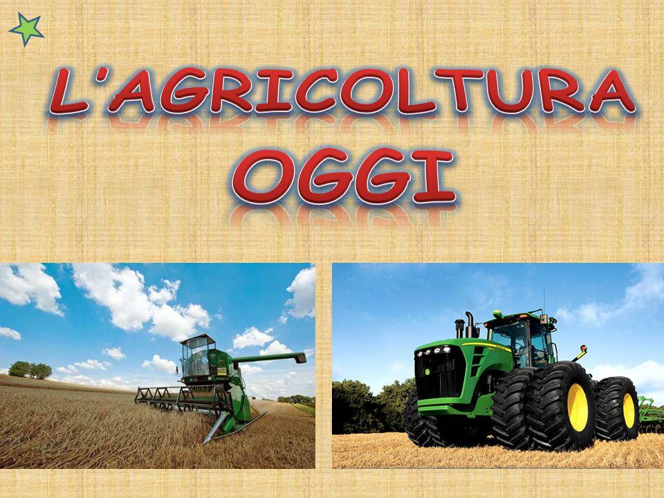 L'AGRICOLTURA OGGI