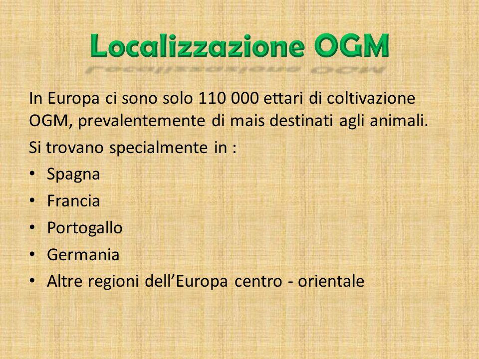 Localizzazione OGM In Europa ci sono solo 110 000 ettari di coltivazione OGM, prevalentemente di mais destinati agli animali.