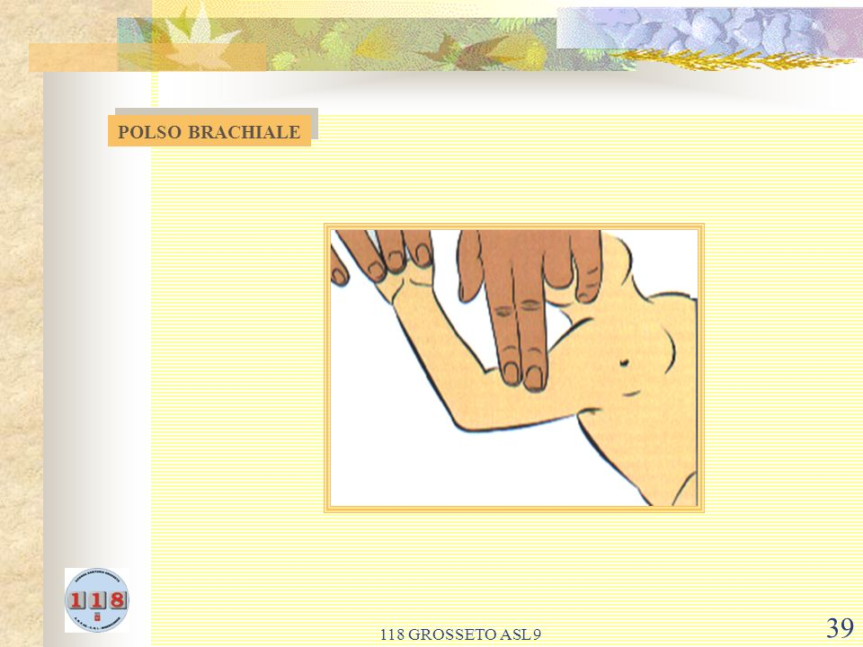 POLSO BRACHIALE 118 GROSSETO ASL 9