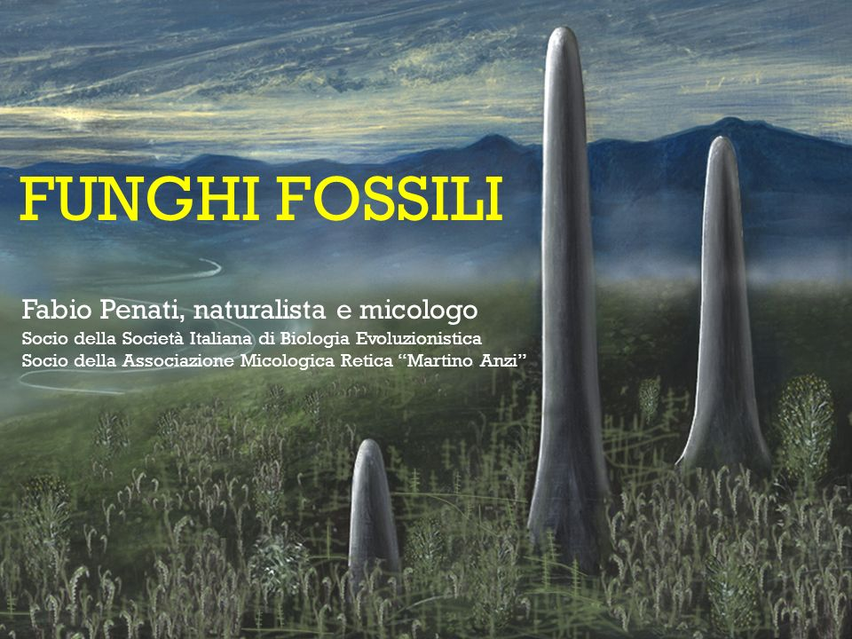 FUNGHI FOSSILI Fabio Penati, naturalista e micologo