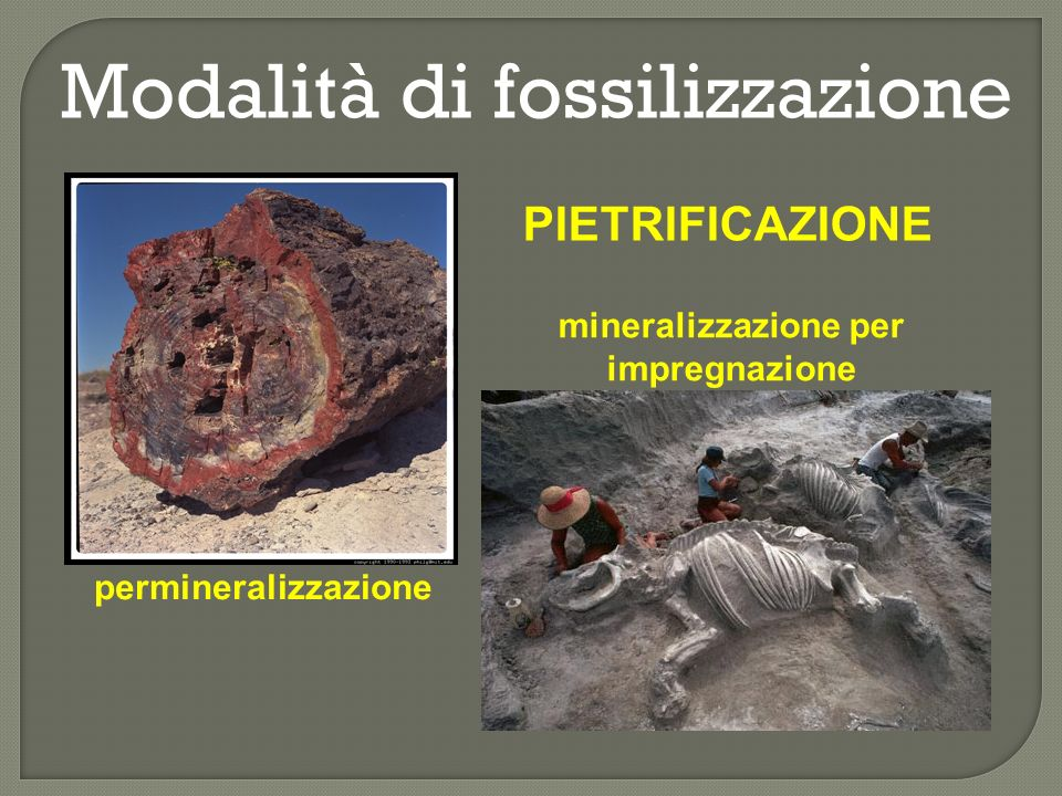 mineralizzazione per impregnazione