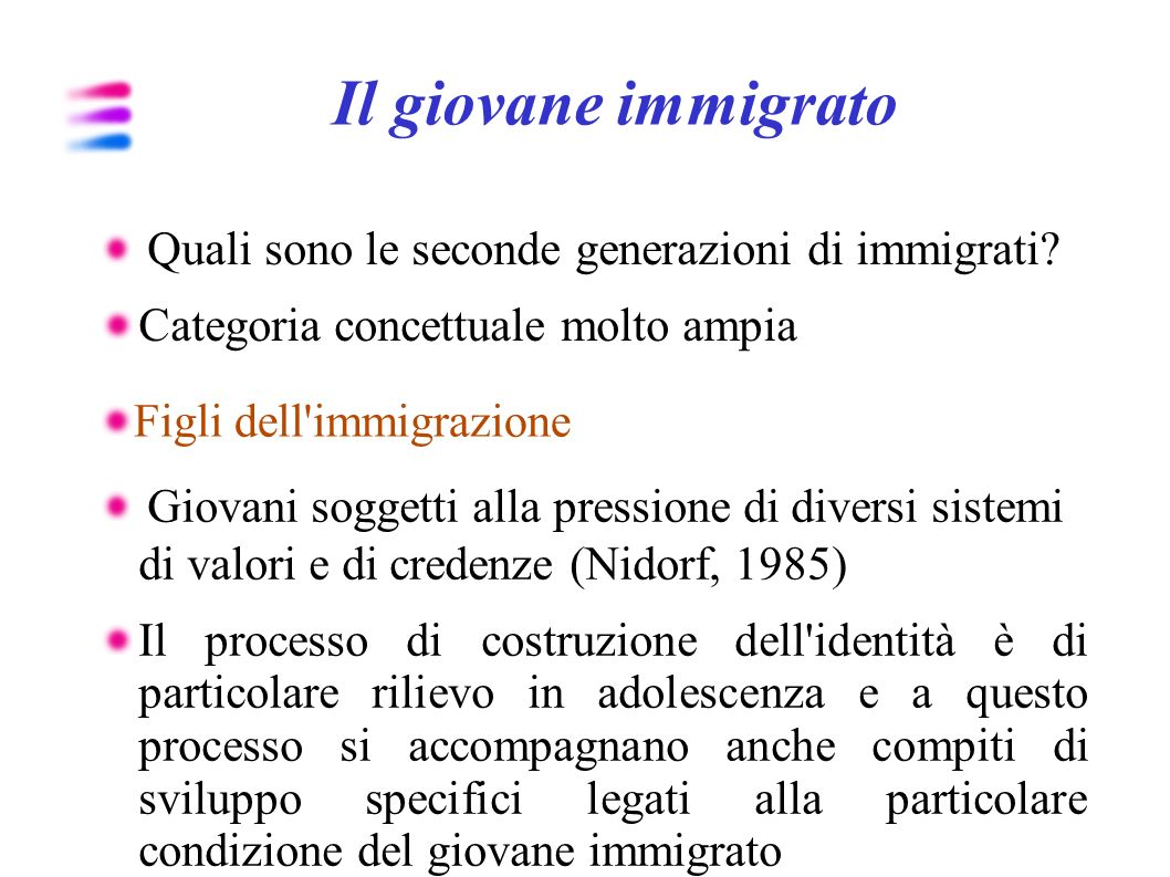 Il giovane immigrato Categoria concettuale molto ampia