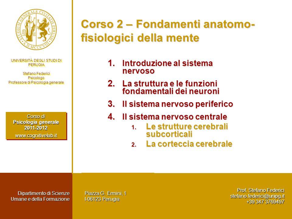 Corso 2 – Fondamenti anatomo-fisiologici della mente